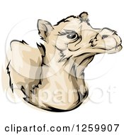 Clipart Of A Camel Mascot Royalty Free Vector Illustration