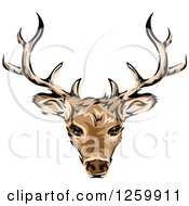 Clipart Of A Deer Head And Antlers Mascot Royalty Free Vector Illustration