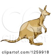 Clipart Of A Kangaroo And Joey Mascot Royalty Free Vector Illustration by BNP Design Studio