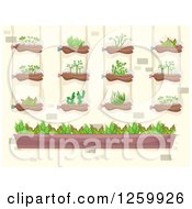 Clipart Of A Vertical Garden On A Brick Wall Royalty Free Vector Illustration