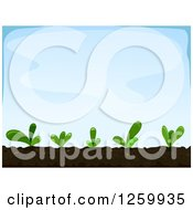 Clipart Of Seedling Plants Over Blue Sky Royalty Free Vector Illustration