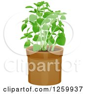 Clipart Of A Potted Basil Plant Royalty Free Vector Illustration