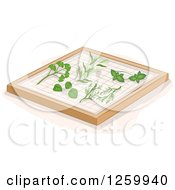 Clipart Of Herbs On A Drying Rack Royalty Free Vector Illustration