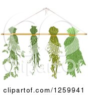 Clipart Of Herbs Hanging To Dry Royalty Free Vector Illustration