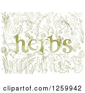 Clipart Of Sketched Herbs Text Over Plants Royalty Free Vector Illustration by BNP Design Studio