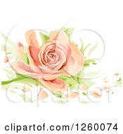 Clipart Of A Peach Colored Rose With Loose Petals Royalty Free Vector Illustration