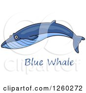 Clipart Of A Swimming Blue Whale Over Text Royalty Free Vector Illustration