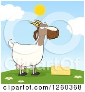 Clipart Of A Red And White Female Boer Goat Doe With Cheese On A Hill Royalty Free Vector Illustration by Hit Toon