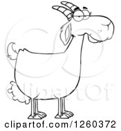 Clipart Of A Black And White Female Boer Goat Doe Royalty Free Vector Illustration by Hit Toon