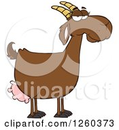 Clipart Of A Red Female Boer Goat Doe Royalty Free Vector Illustration by Hit Toon