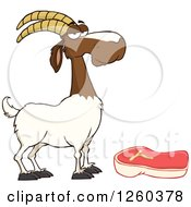 Clipart Of A Red And White Male Boer Goat Wether By A Chevon Steak Royalty Free Vector Illustration