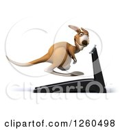 Clipart Of A 3d Kangaroo Exercising On A Treadmill Royalty Free Illustration by Julos