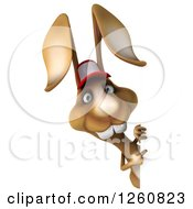 Clipart Of A 3d Brown Bunny Rabbit Wearing A Baseball Hat And Pointing Around A Sign Royalty Free Illustration