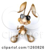 Clipart Of A 3d Brown Bunny Rabbit Wearing Sunglasses And Giving A Thumb Up Royalty Free Illustration