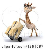Clipart Of A 3d Bespectacled Giraffe Moving Boxes On A Dolly Royalty Free Illustration