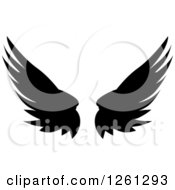 Black Silhouetted Feathered Wings