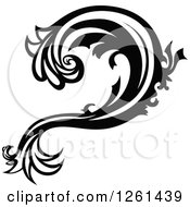 Black And White Floral Flourish Design Element