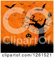 Clipart Of A Spooky Tree With An Owl And Hanging Jackolantern Pumpkin Over Grass Grungy Orange And Vampire Bats Royalty Free Vector Illustration by KJ Pargeter