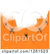 Halloween Background Of Black Spiders Hanging Over White Paint On Orange