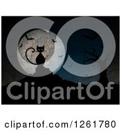 Clipart Of A Black Cat Against A Full Moon With Bats A Bare Tree And Spider In Grunge Texture Royalty Free Illustration by KJ Pargeter