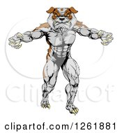 Clipart Of A Muscular Bulldog Man Mascot Standing Upright Royalty Free Vector Illustration