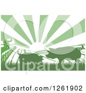 Clipart Of A Sunrise Over A Green Silhouetted Farm House With Pigs And Fields Royalty Free Vector Illustration