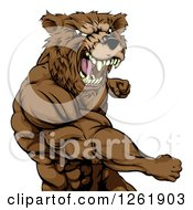 Clipart Of A Roaring Angry Muscular Bear Man Punching Royalty Free Vector Illustration by AtStockIllustration