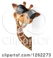 Clipart Of A 3d Giraffe Wearing Sunglasses And Smiling Around A Sign Royalty Free Illustration by Julos
