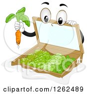 Clipart Of A Cold Frame Garden Plucking A Carrot Royalty Free Vector Illustration