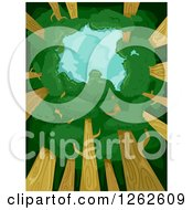 Clipart Of A View Upwards Towards The Sky With A Tree Canopy Royalty Free Vector Illustration
