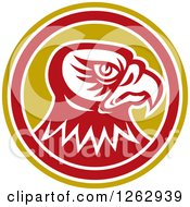 Clipart Of A Tough Falcon Head In A Yellow White And Red Circle Royalty Free Vector Illustration