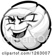Volleyball Mascot