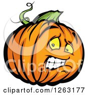 Clipart Of A Scared Halloween Pumpkin Character Royalty Free Vector Illustration by Chromaco