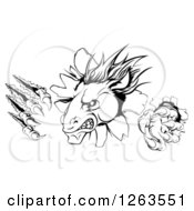 Clipart Of A Black And White Aggressive Horse Stallion Breaking Through A Wall With Claws Royalty Free Vector Illustration