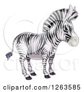 Clipart Of A Cute Zebra Royalty Free Vector Illustration by AtStockIllustration
