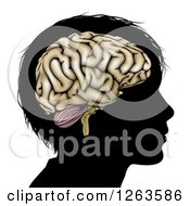 Clipart Of A Silhouetted Boys Head With A Brain Royalty Free Vector Illustration