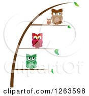 Clipart Of Owls Perched On Different Levels Of A Plant Royalty Free Vector Illustration by pauloribau