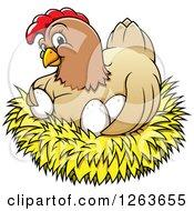 Happy Hen Hugging Chicken Eggs In A Nest