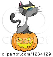 Clipart Of A Black Cat Sitting On A Halloween Jackolantern Pumpkin Royalty Free Vector Illustration by Hit Toon