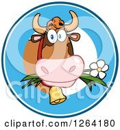 Clipart Of A Cow Eating A Daisy Logo Royalty Free Vector Illustration