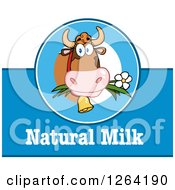 Clipart Of A Blue And White Cow Natural Milk Label Royalty Free Vector Illustration by Hit Toon