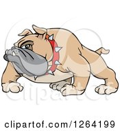 Clipart Of A Tough Brown Bulldog Royalty Free Vector Illustration by Dennis Holmes Designs