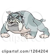 Clipart Of A Tough Curious Gray Bulldog Royalty Free Vector Illustration by Dennis Holmes Designs