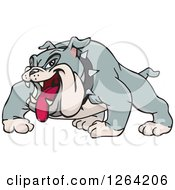 Clipart Of A Tough Gray Bulldog With His Tongue Hanging Out Royalty Free Vector Illustration by Dennis Holmes Designs
