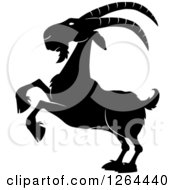 Clipart Of A Black And White Rearing Buck Goat Royalty Free Vector Illustration by Hit Toon