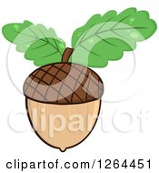 Clipart Of An Acorn With Green Oak Leaves Royalty Free Vector Illustration by Hit Toon