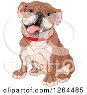 Clipart Of A Cute Happy Sitting Brown English Bulldog Royalty Free Vector Illustration