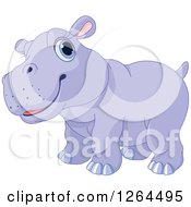 Clipart Of A Cute Purple Baby Hippo Royalty Free Vector Illustration