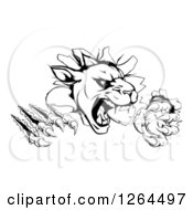 Clipart Of A Black And White Panther Clawing Through A Wall Royalty Free Vector Illustration