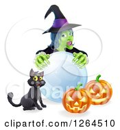 Clipart Of A Green Witch With A Crystal Ball Black Cat And Halloween Jackolantern Pumpkins Royalty Free Vector Illustration by AtStockIllustration
